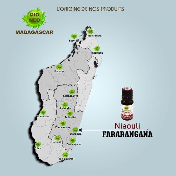 huile essentielle Niaouli