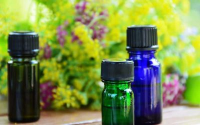 Les 5 huiles essentielles indispensables