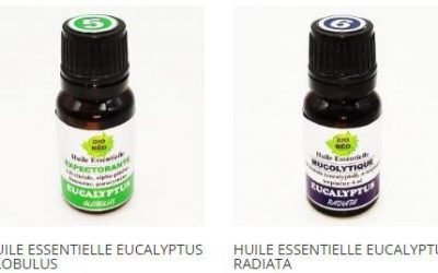 Utilisation des huiles essentielles Eucalyptus globulus et Eucalyptus radiata de BioNéo