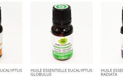 Soigner la sinusite avec les huiles essentielles d'Eucalyptus de BioNéo